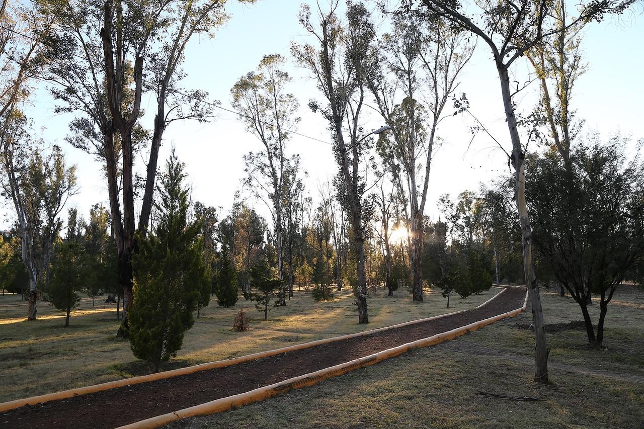 Parques son declarados Área Natural Protegida