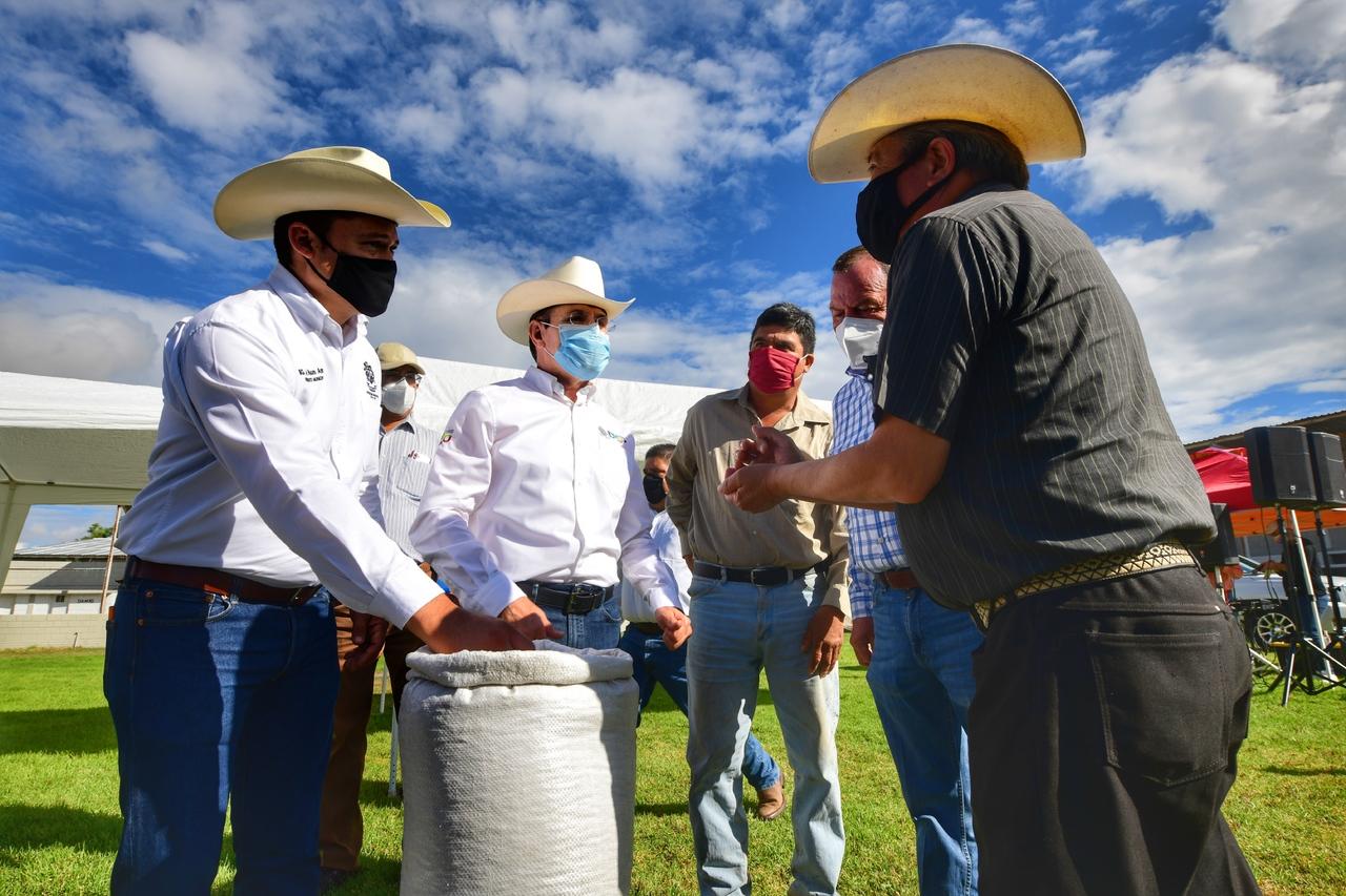 Beneficia Gobernador a 400 familias más con semilla de frijol