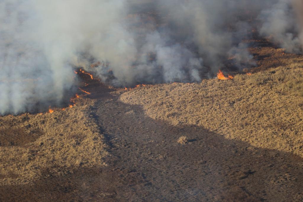 Avanzan los incendios en el río Paraná de Argentina