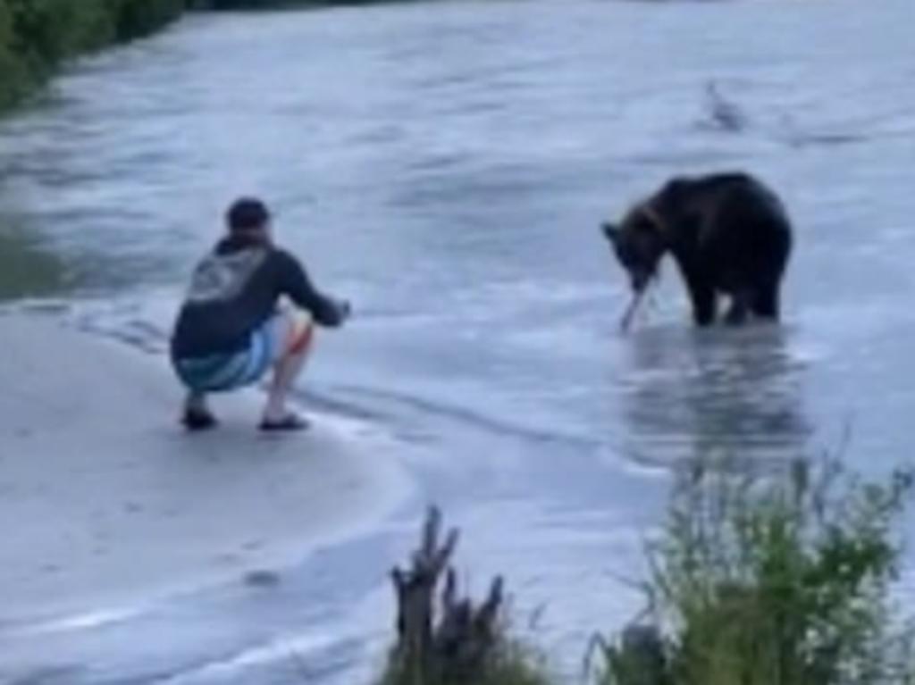 Pescador tiene encuentro cercano con un oso y este 'le roba' su botín