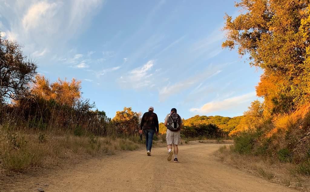 ¿Por qué caminar sirve como terapia?