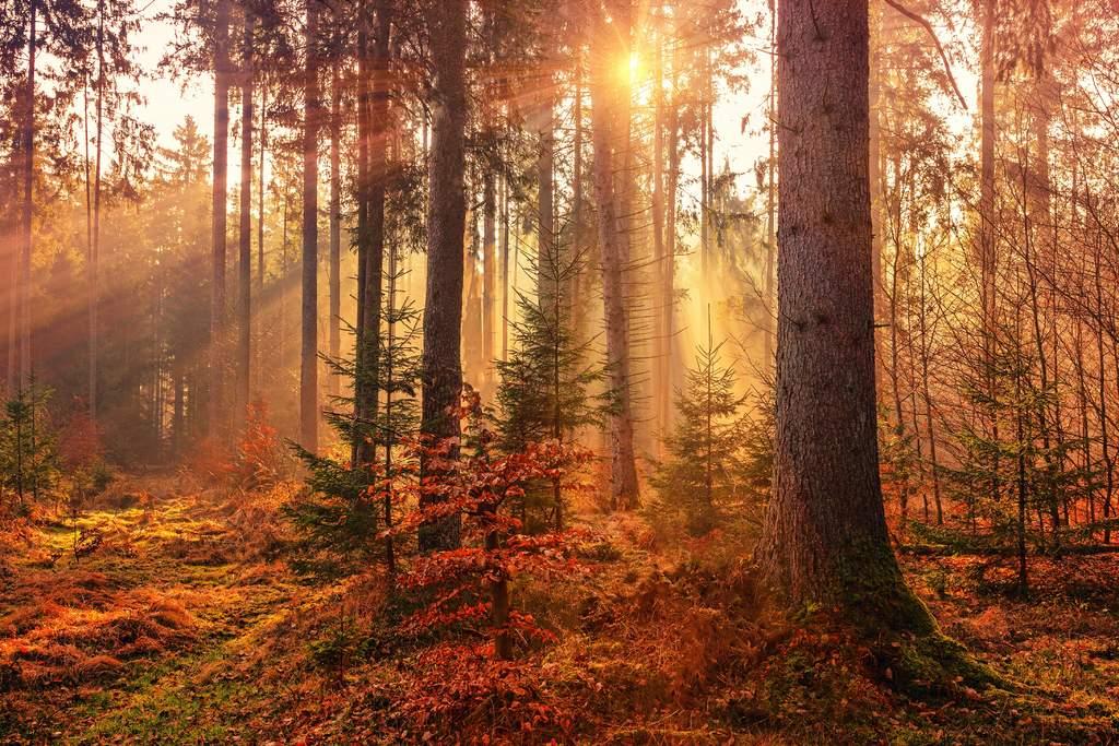 ¿Qué es el equinoccio de otoño?