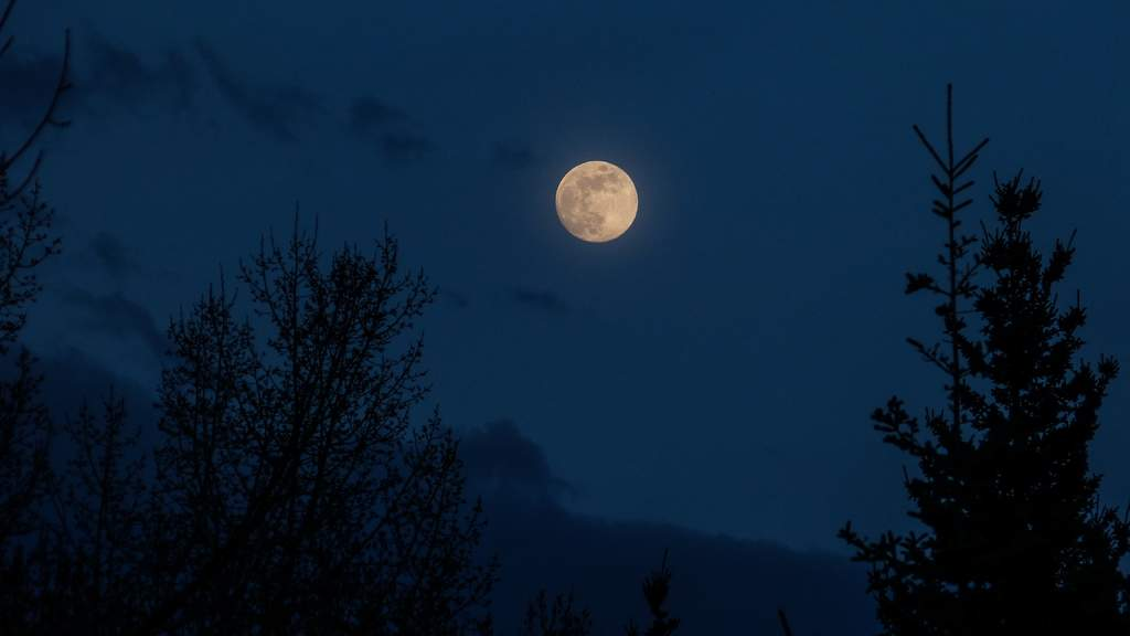 ¿Cómo se verá la Luna Azul la próxima noche de 'Halloween'?