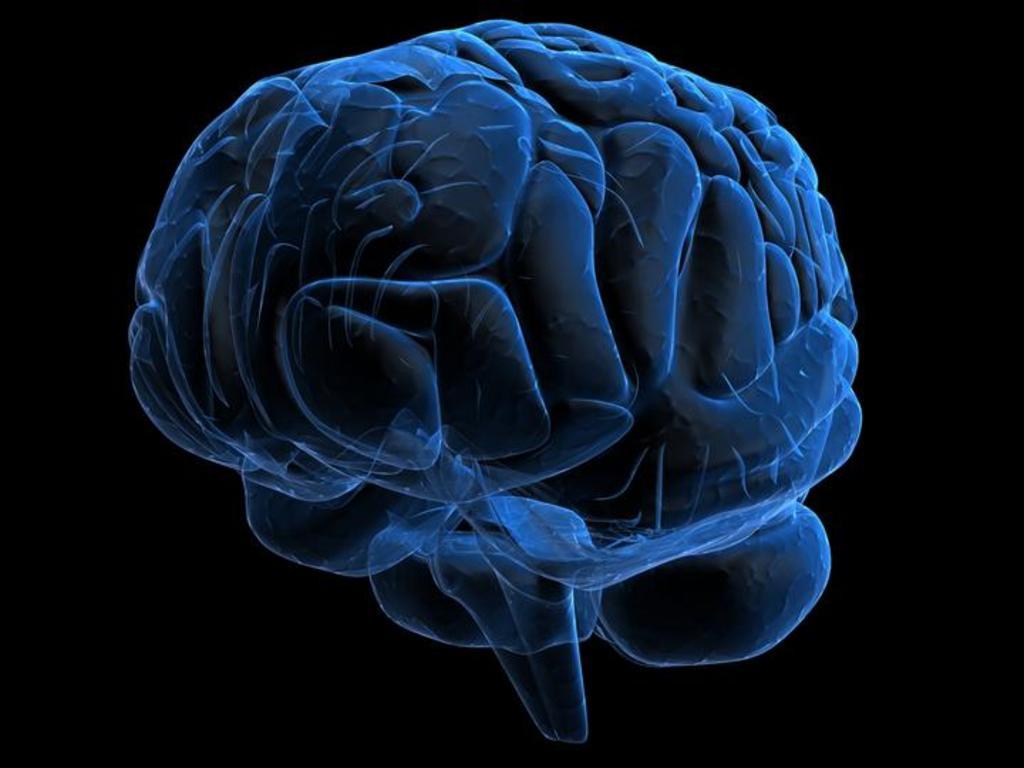 Proteína que protege el cerebro de la hipoxia es la que lo daña