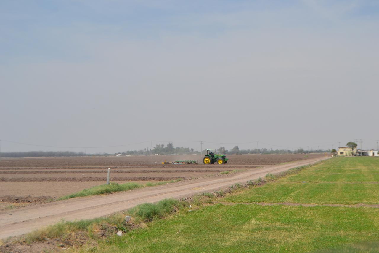 Plantean inhibir el fertilizante químico