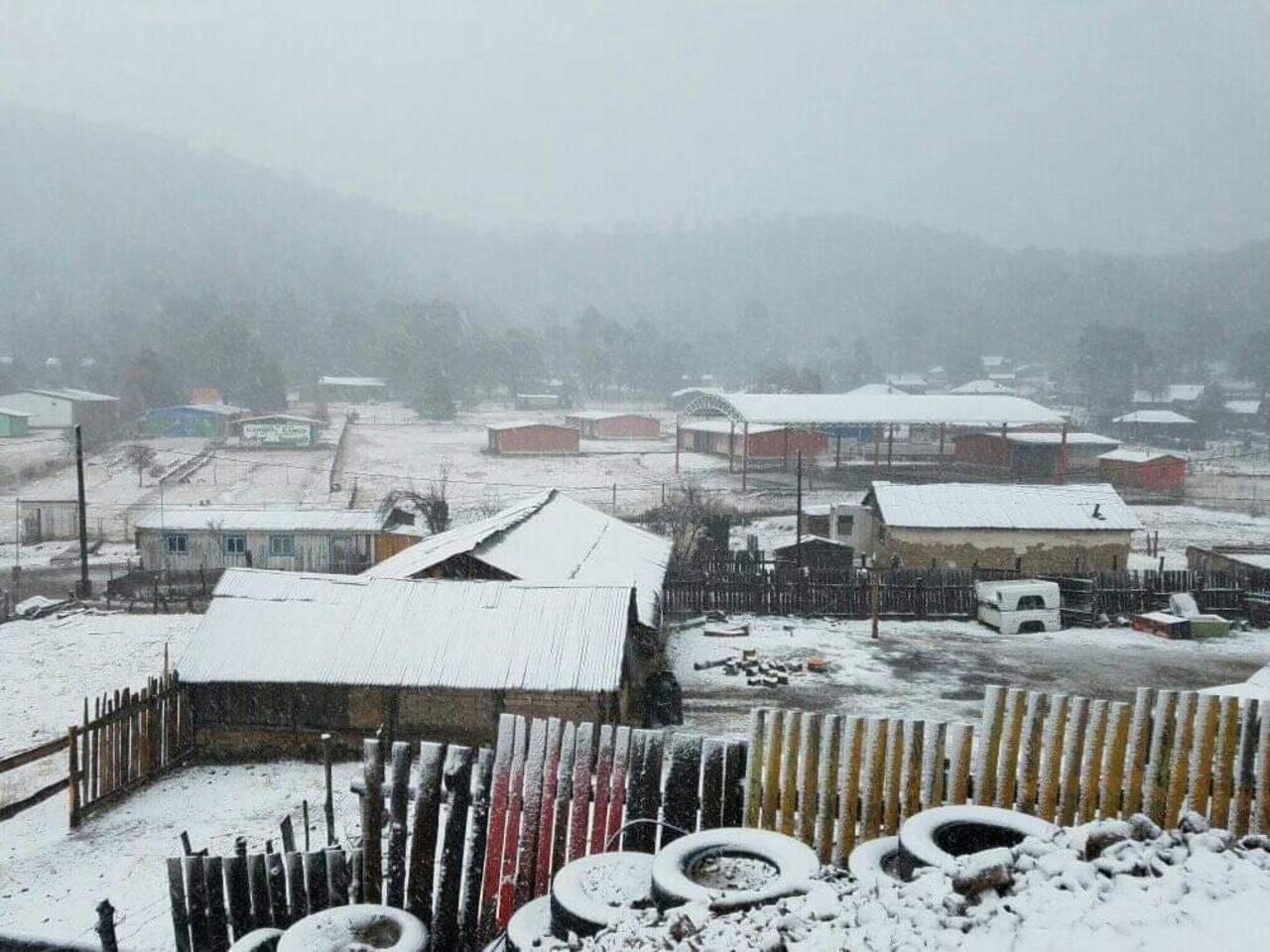 Declaran emergencia para 13 municipios de Durango por nevadas