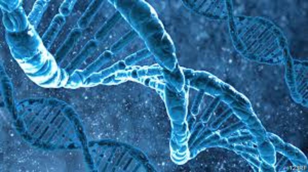 Asegura estudio que gemelos idénticos no lo son genéticamente