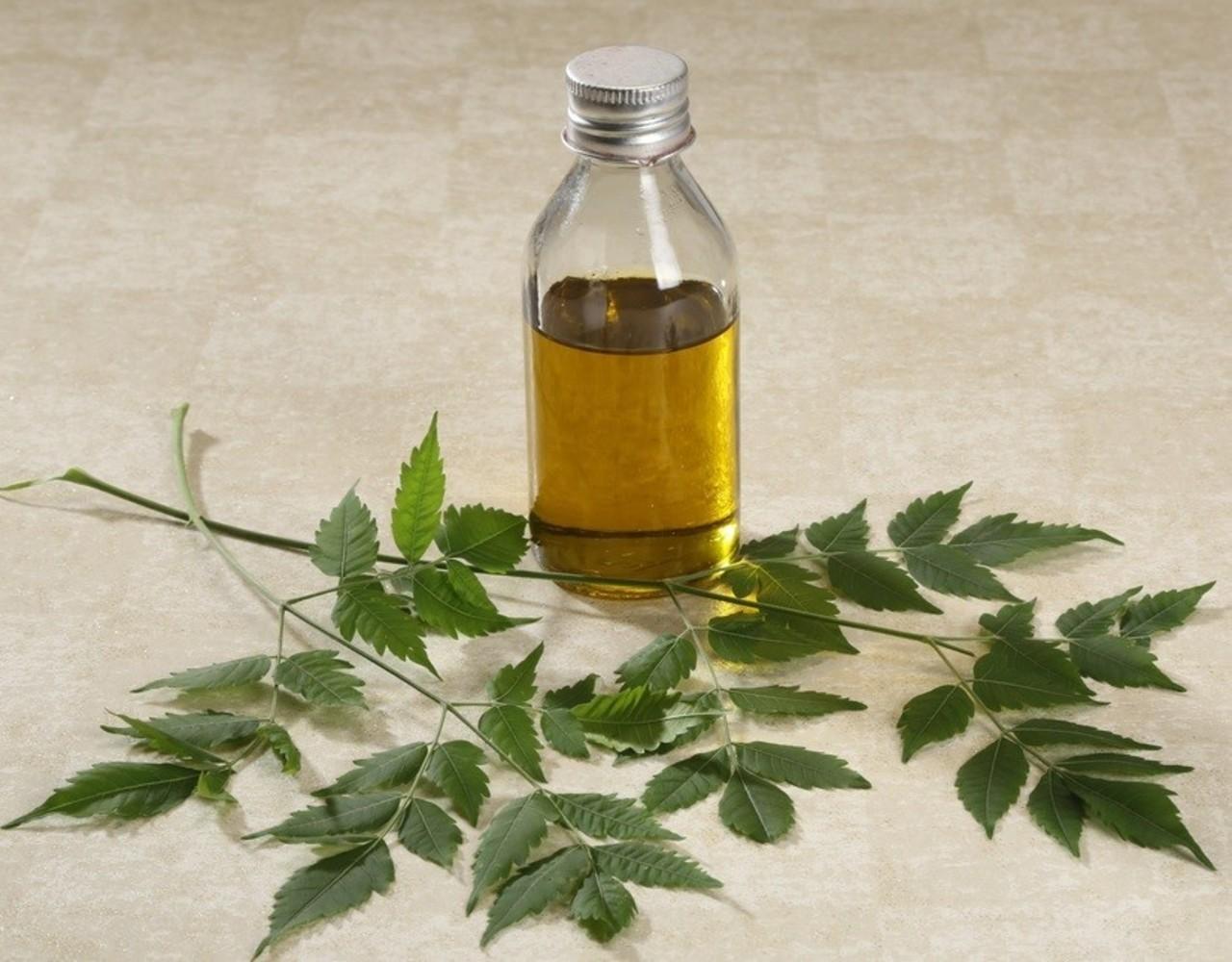 ¿Qué es el aceite de neem?