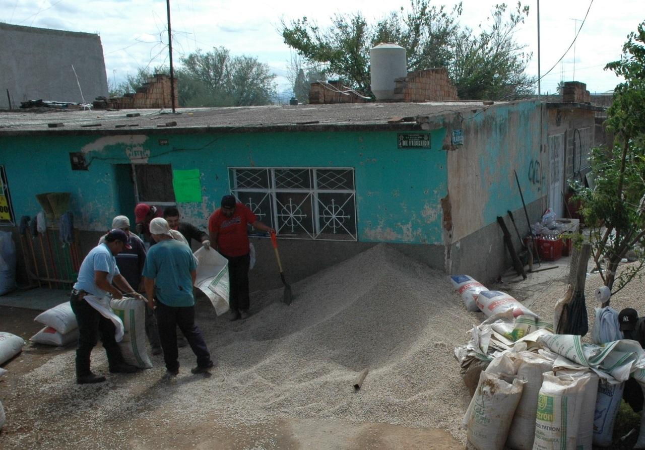 Reporta el estado de Durango una producción de 47 mil ton. de frijol