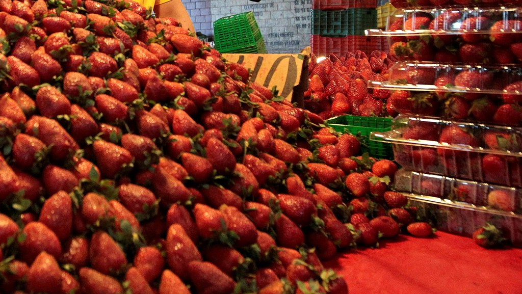 Agroalimentos alcanzan superávit en México