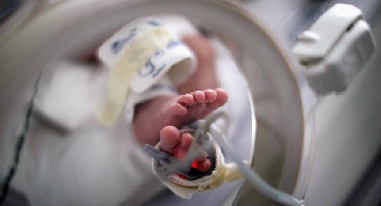 Nace en San Luis Potosí el primer bebé mexicano con anticuerpos contra Covid-19