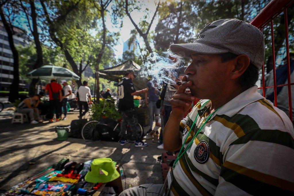 México puede usar marihuana con fines medicinales: ONU