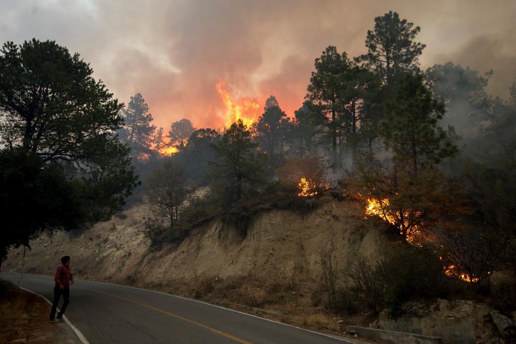 Multa de 4.4 mdp por incendio en Sierra de Arteaga, sanción máxima