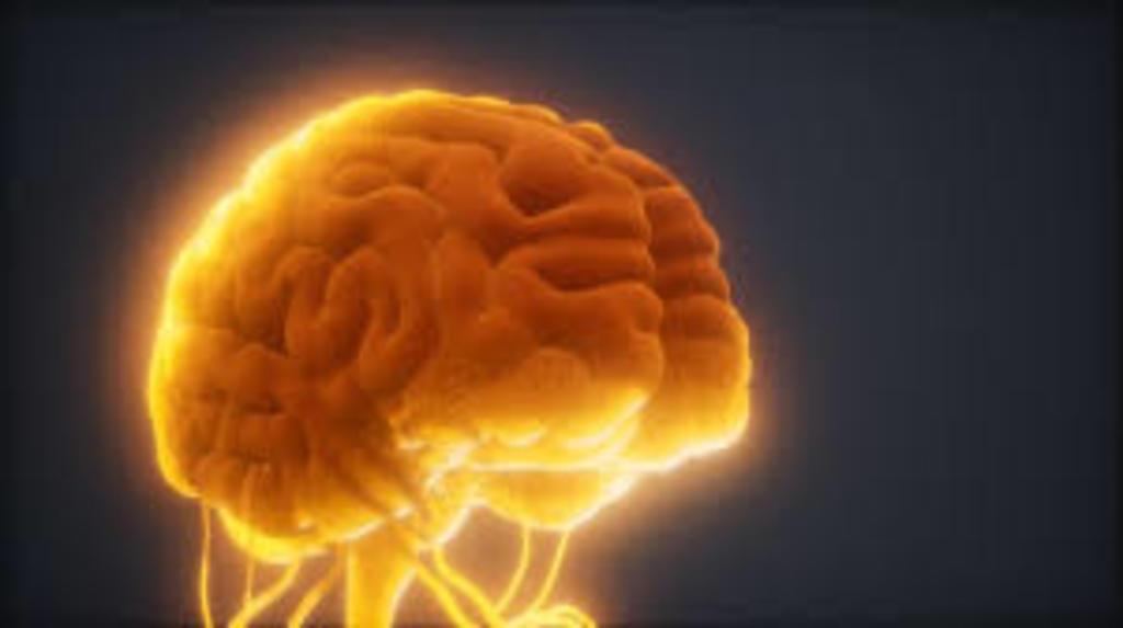 Crean biobanco con muestras vivas para investigar la metástasis cerebral