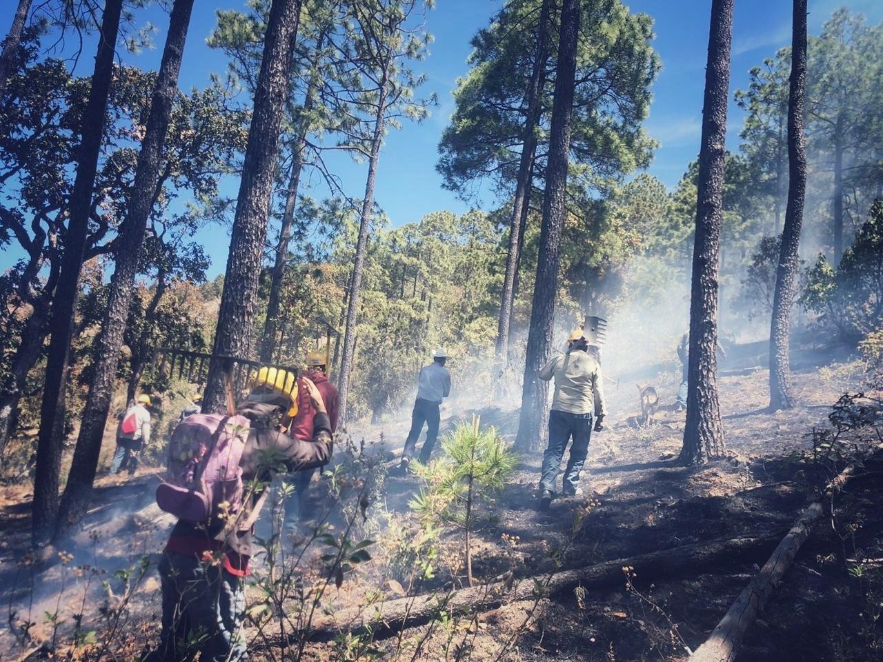 Suma Durango 82 incendios forestales