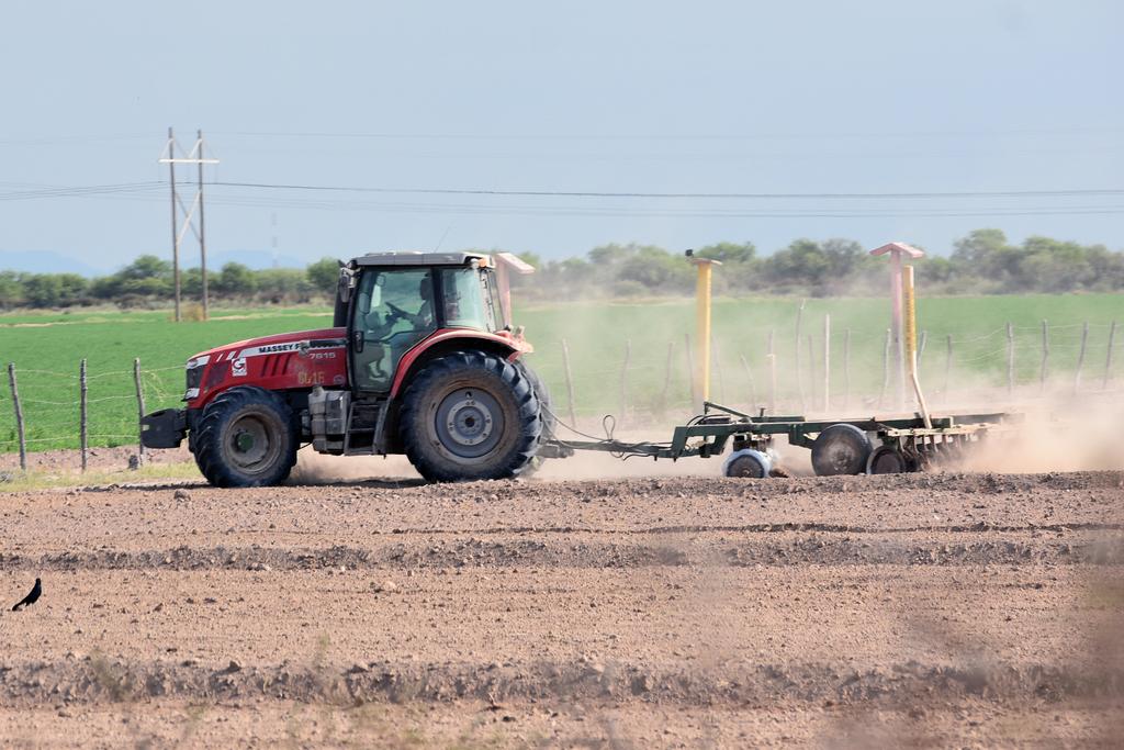 Prevé México alza en producción agrícola