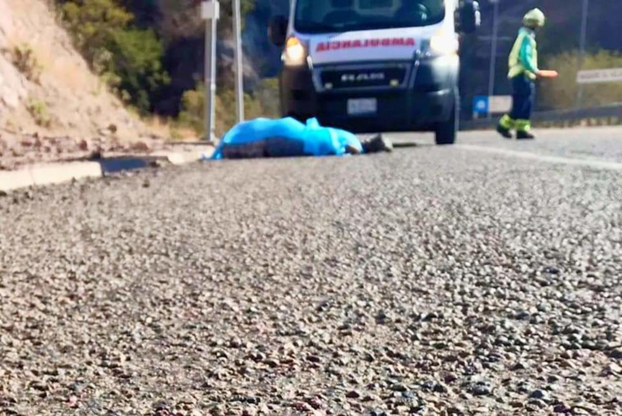 Chofer salta de su tráiler y fallece en la supercarretera