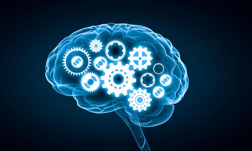 Realizan avance para comprender cómo almacenan recuerdos los humanos