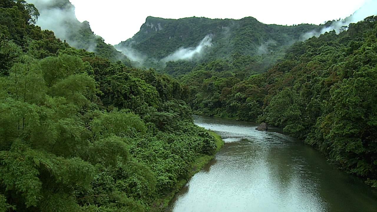 Denuncian indígenas graves daños ambientales en biosfera de Honduras