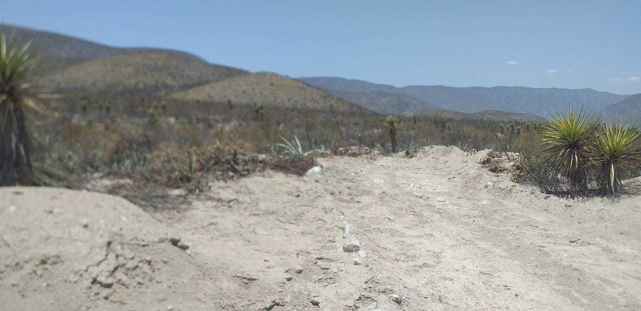 Interponen amparo a favor de proyecto Agua Saludable