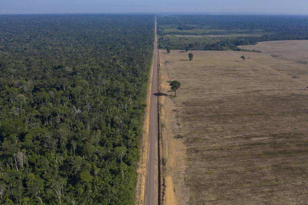 Deforestación en Brasil alcanza nivel récord