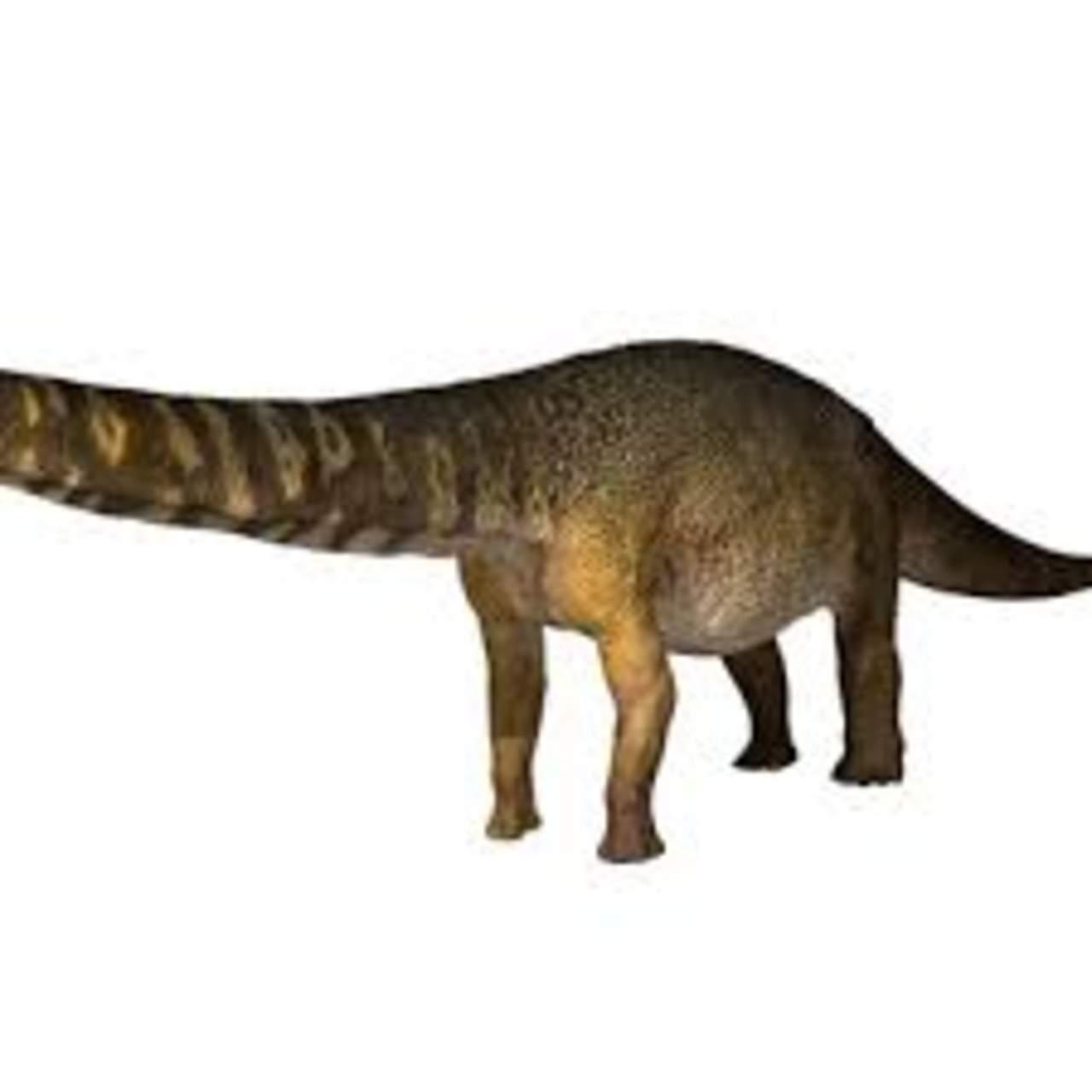Identifican nueva especie de dinosaurio como la más grande de Australia