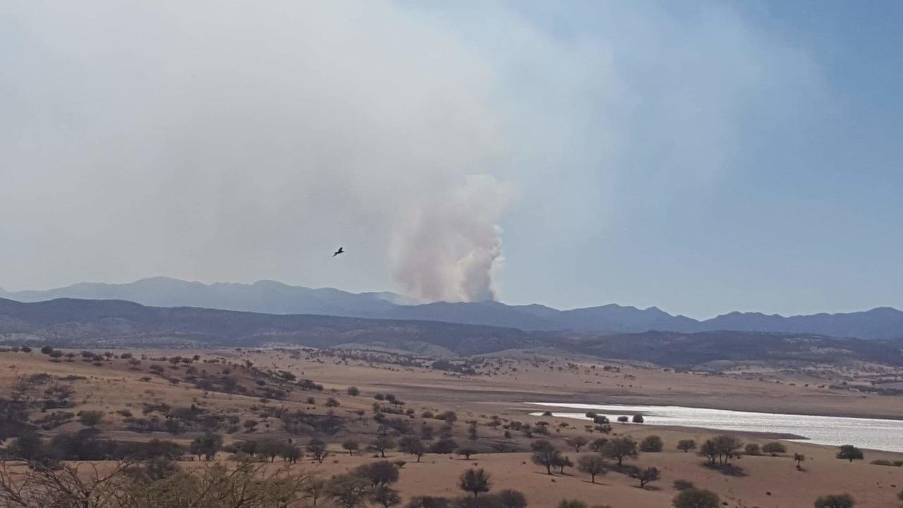 Hay 57 mil hectáreas afectadas por incendios forestales en Durango