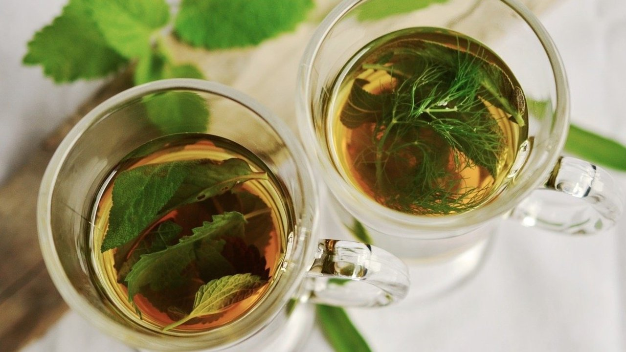 Menta, virtuosa hierba para tu salud