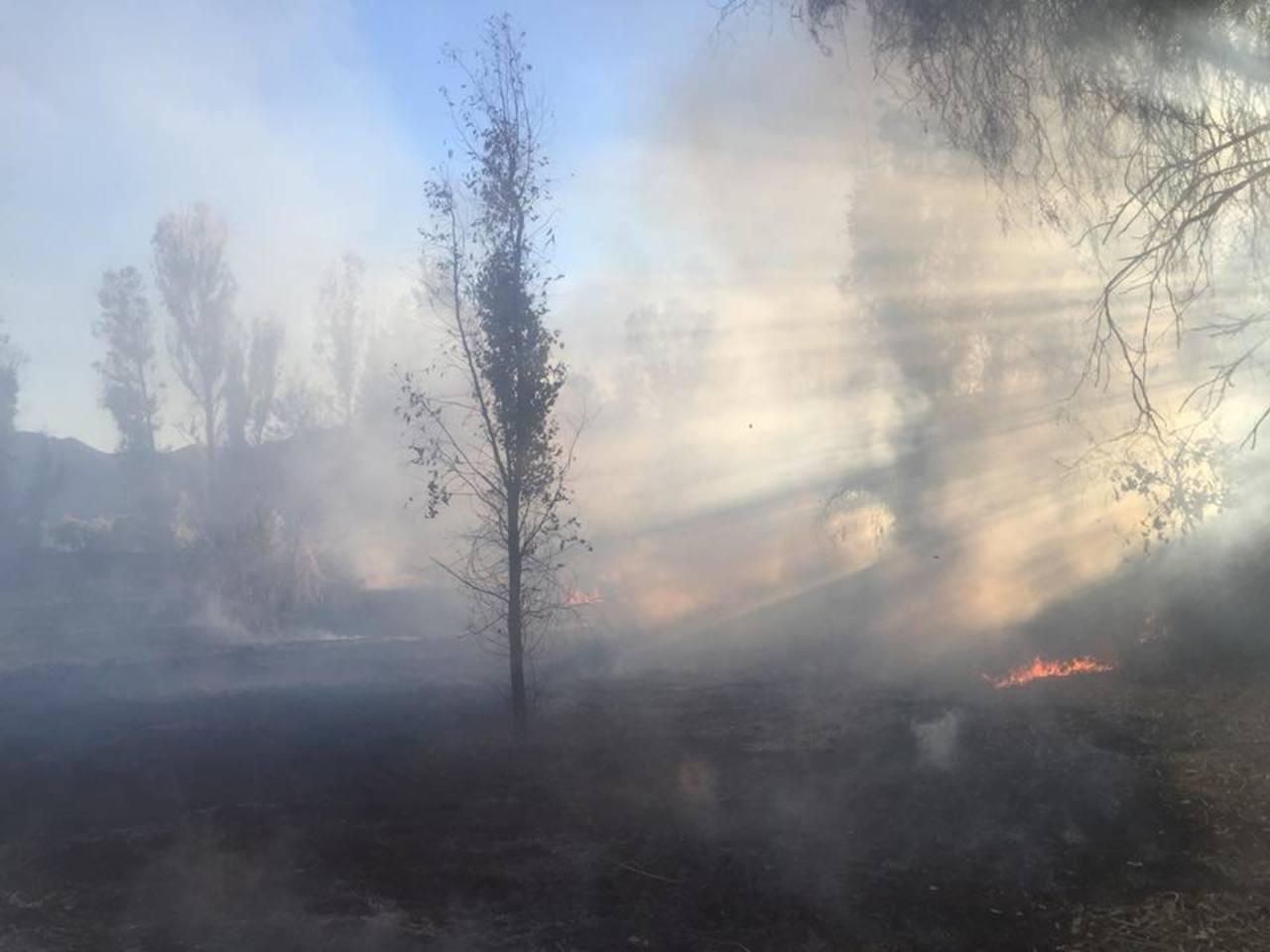 Durango, segundo más afectado por incendios forestales