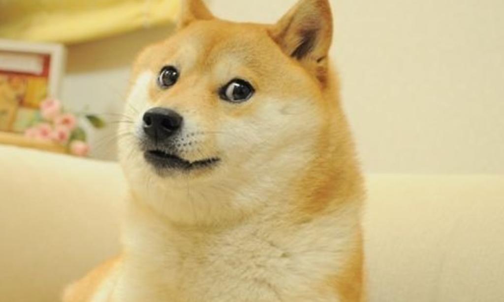 Venden el meme de 'Doge' por 4 millones de dólares