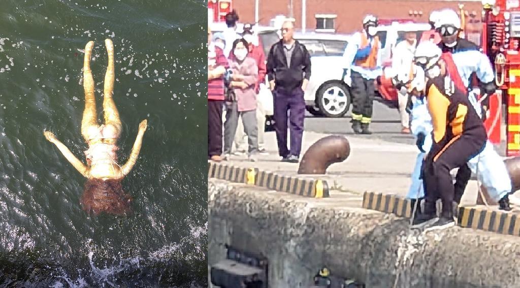 Rescatistas intentan salvar a 'mujer ahogada' en Japón y se llevan 'gran sorpresa' al sacarla del