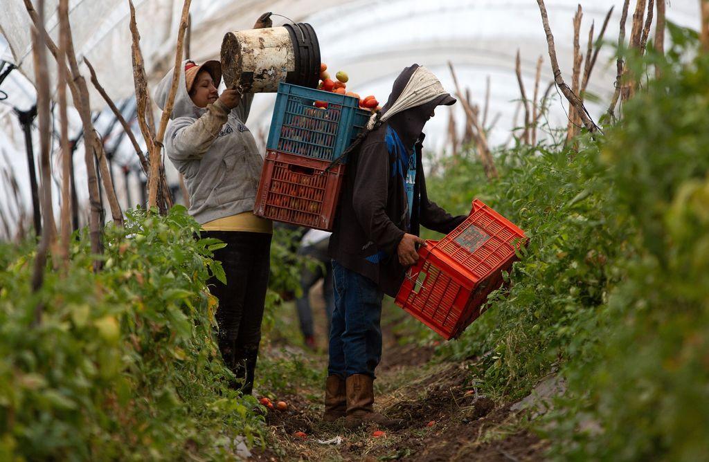Estados Unidos se adelanta con peticiones laborales contra México