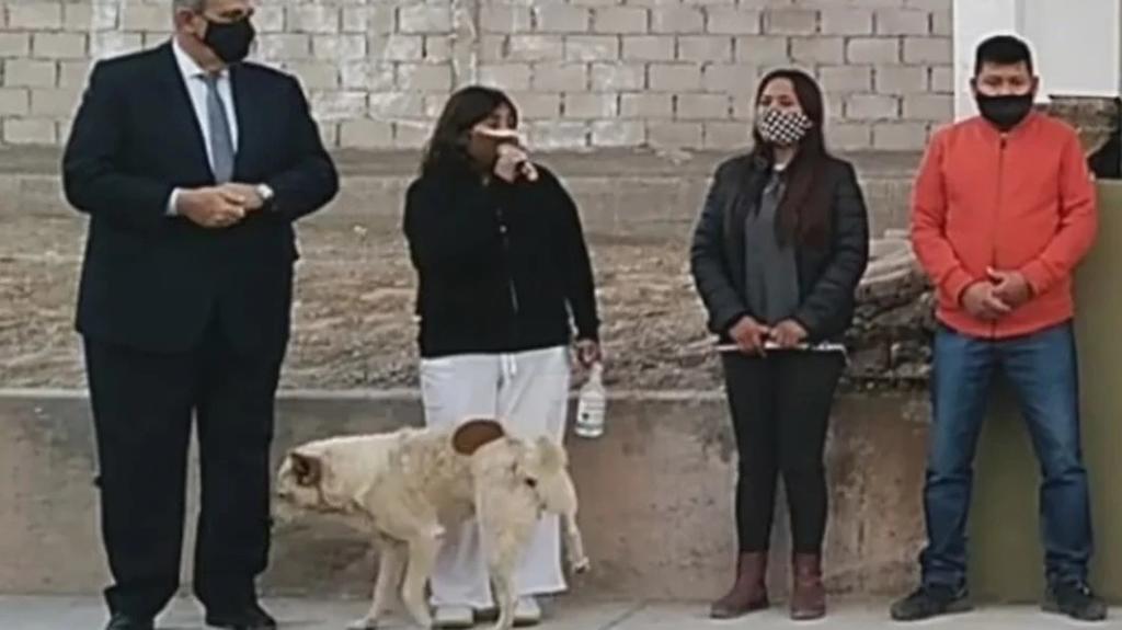 Perro orina a presidenta municipal en Argentina durante evento público