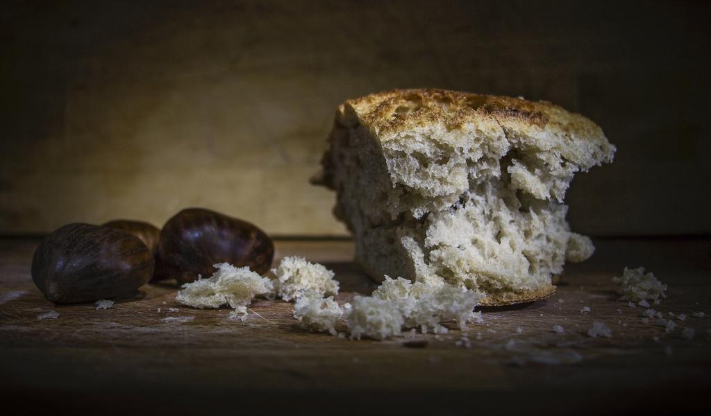 Niña pierde la vida en Veracruz tras comer un pan envenenado