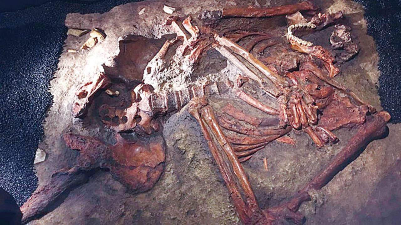 Neandertales, la especie europea que surgió de Oriente Medio