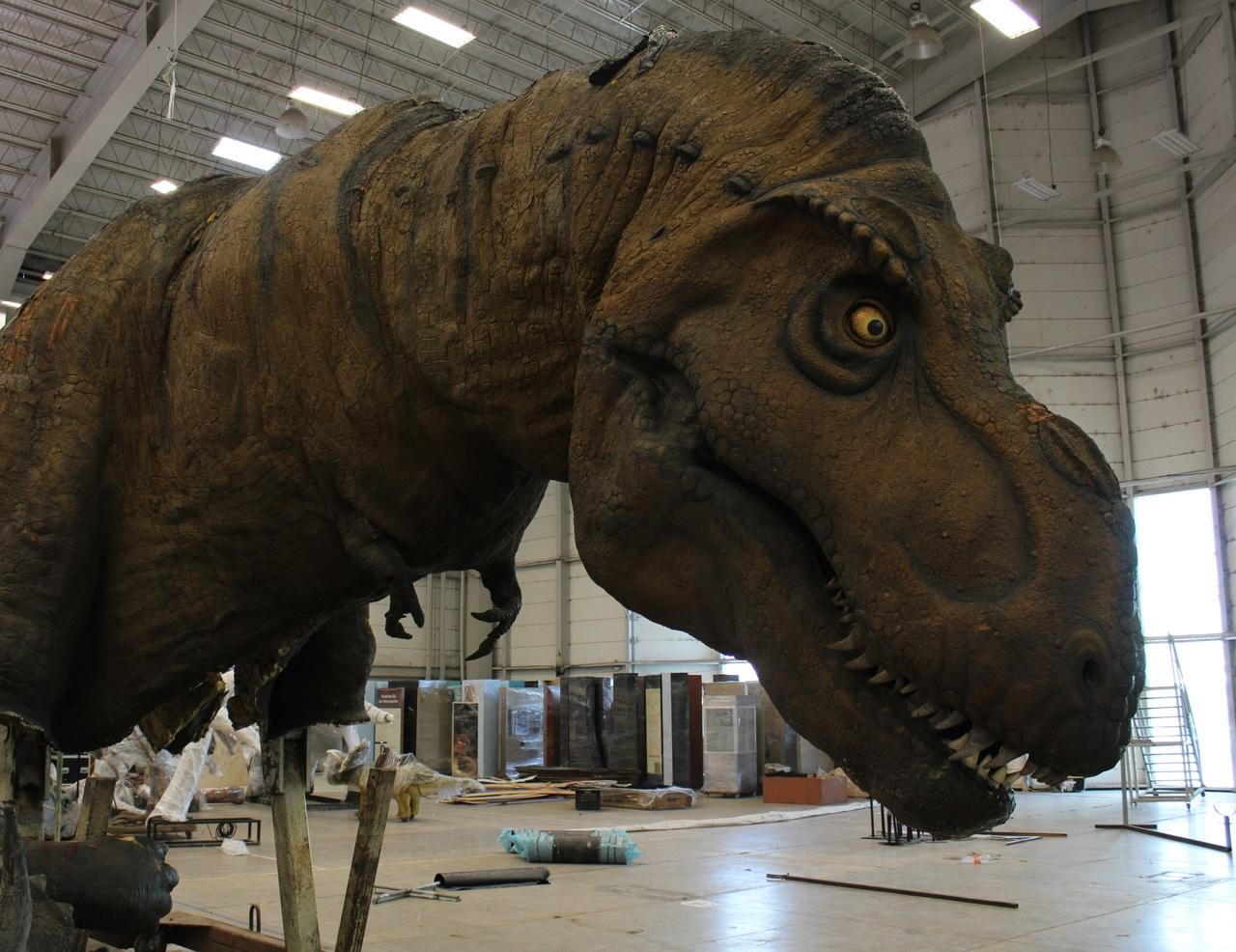 Los dinosaurios, listos el viernes