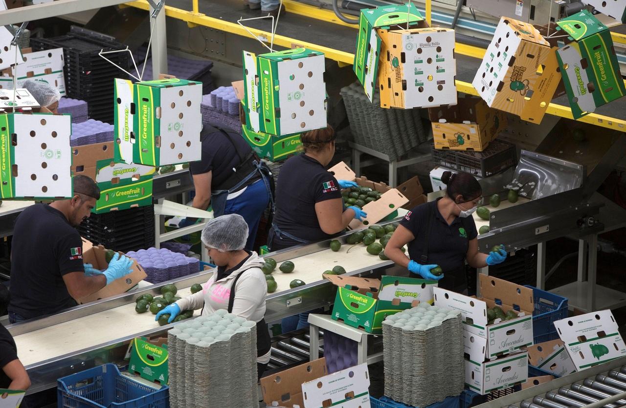 Exportaciones reportan un aumento del 125.2%