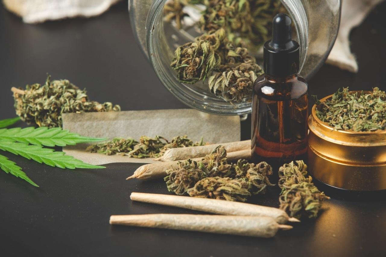 Marihuana, más adictiva y menos medicinal: CEPPAD