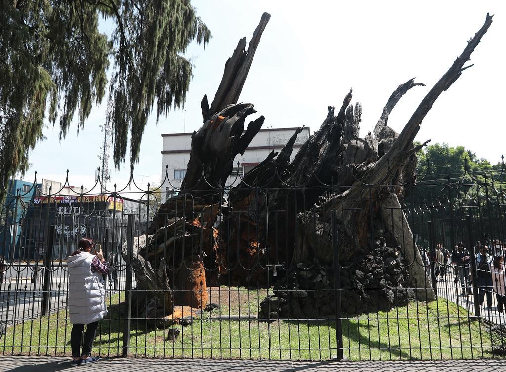 Sitio donde Hernán Cortés lloró su derrota será Plaza de la Noche Victoriosa