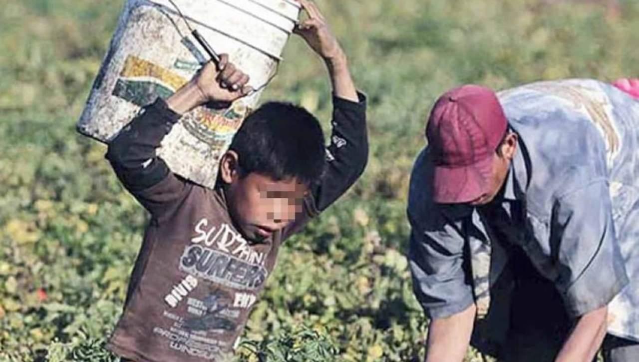 Hay 5 municipios de Durango con mayor riesgo de trabajo infantil