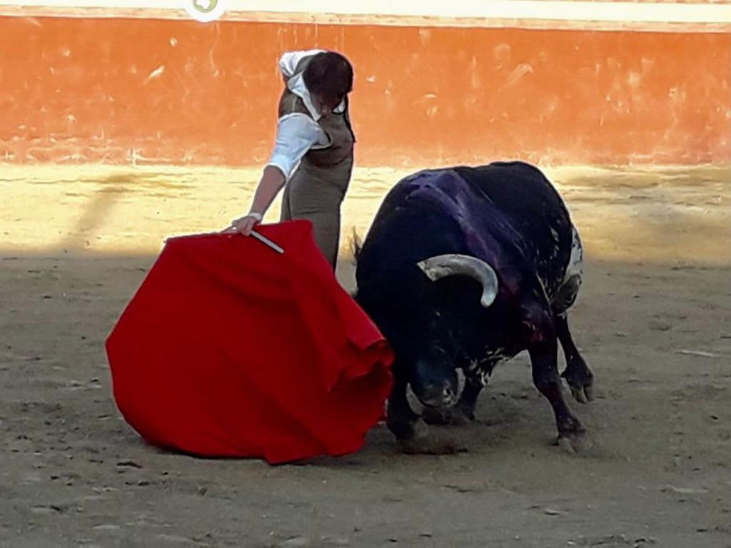 Lagunero Arturo Gilio toreará en Francia