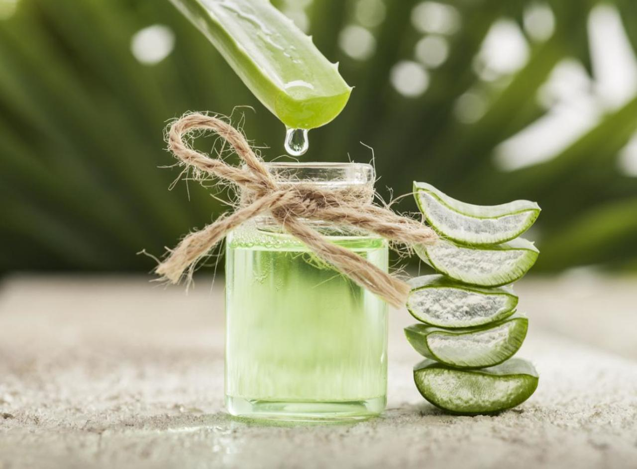 Cinco usos del Aloe Vera