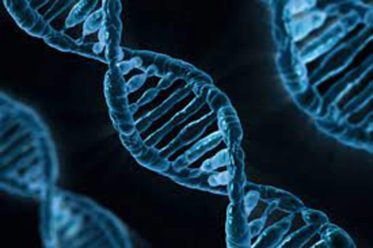 Científicos demuestran que la edición del genoma con CRISPR es posible en el espacio