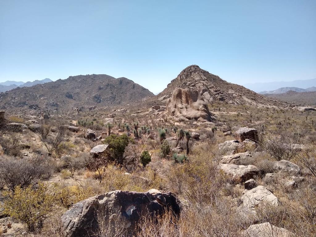 El Congreso de Durango declara a la Sierra del Sarnoso y La India Área Natural Protegida