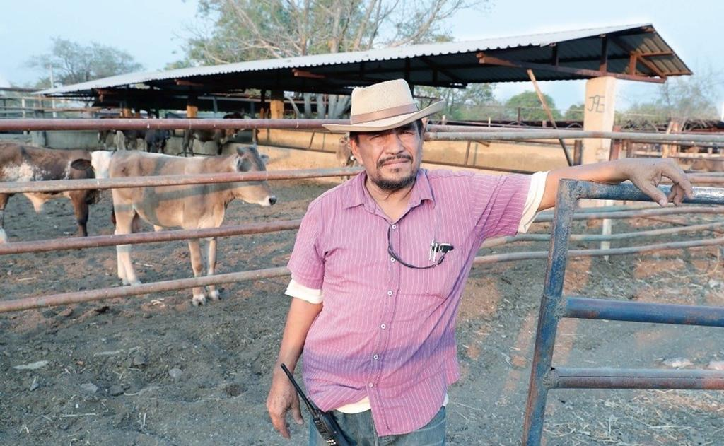 Autodefensas en Michoacán hallan con vida a 'El Kiro', uno de sus fundadores