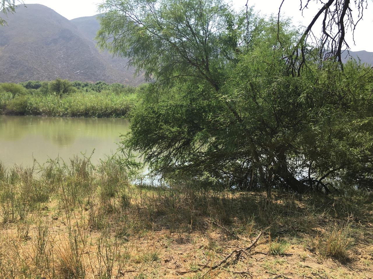 Advierten por posible afectación con 'Agua Saludable'