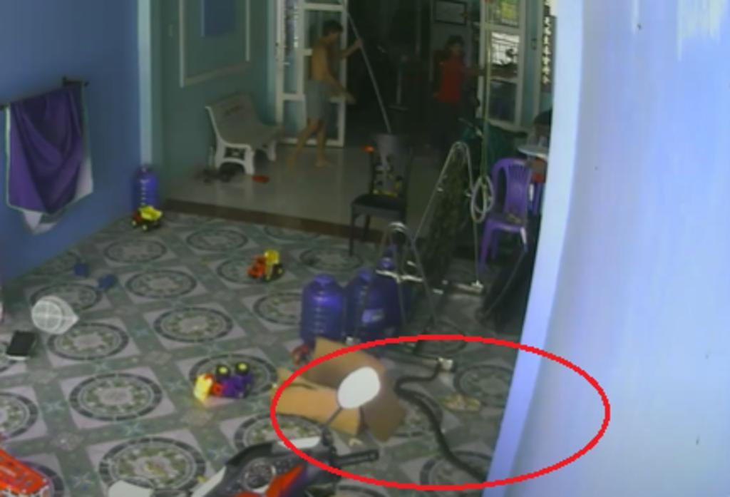 Cobra real persigue a familia que jugaba en su cochera