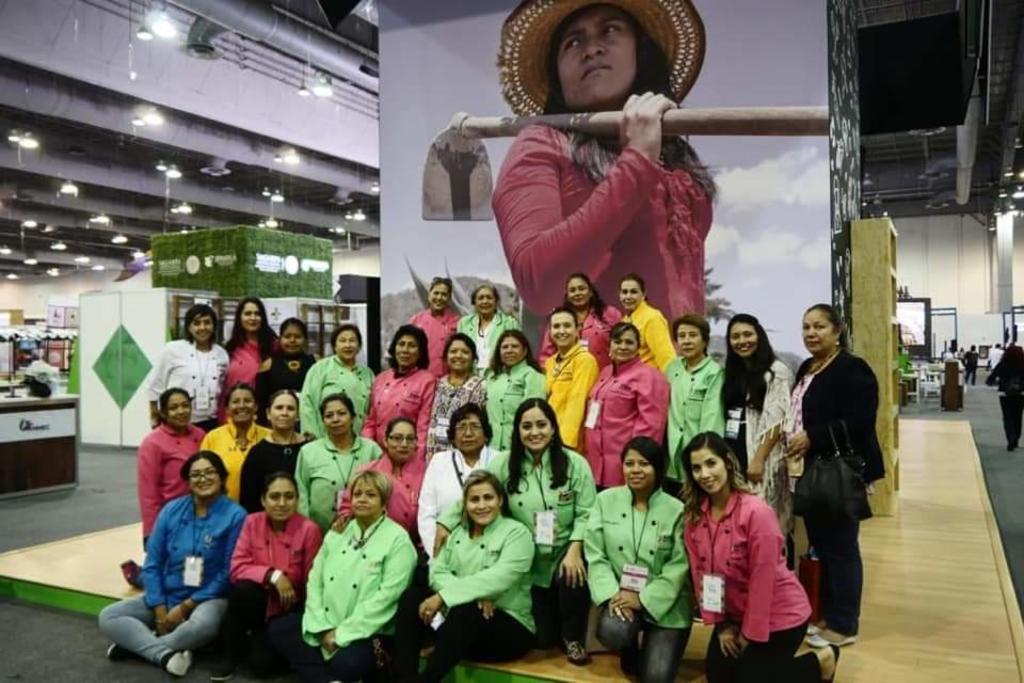 Ante nuevo ola de COVID cancelan Congreso Anual ANMEC