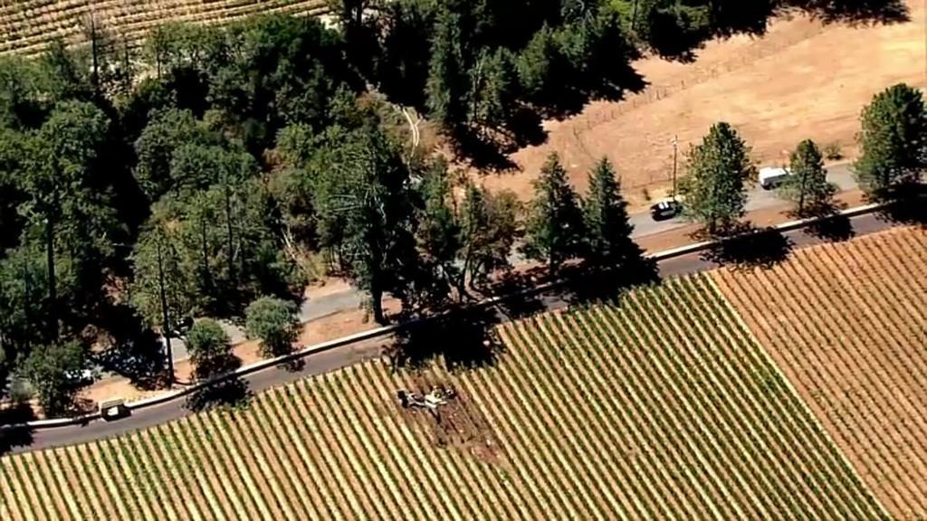 Una avioneta con tres personas a bordo se estrella en un viñedo de California