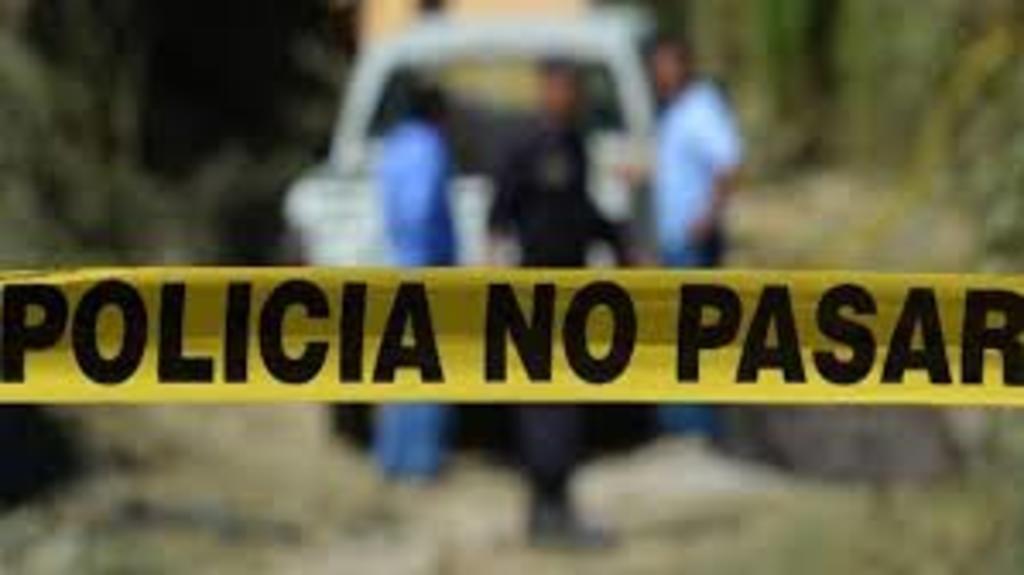 Trabajadores localizan restos óseos durante excavación en San Luis Potosí